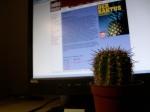 Kaktus von Juli Zeh
